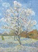 Персиковые деревья в цвету (Peach Trees in Blossom), 1888 - Гог, Винсент ван
