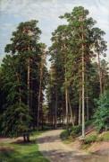 Солнце в лесу, 1895 - Шишкин, Иван Иванович