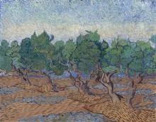 Оливковая роща (Olive Grove), 1889 03 - Гог, Винсент ван