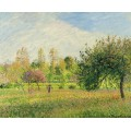 Луг на Эрани, лето, солнце, вечер, 1901 - Писсарро, Камиль