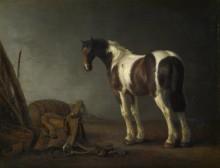 Лошадь рядом  с седлом - Калрайт, Абрахам ван