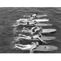 Мужчины плывут на досках для серфинга