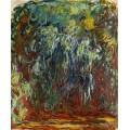 Плакучая ива, Живерни, 1920-1922 - Моне, Клод