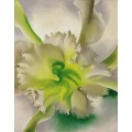 Орхидея - О'Кифф, Джорджия