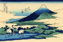 Умегава в провинции Сагами - Кацусика, Хокусай