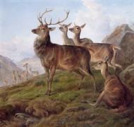 Олени в высокогорном пейзаже - Джонс, Чарльз