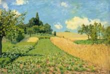 Кукурузное поле - Сислей, Альфред
