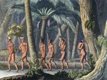 Индейские племена - Фумагали, Джероламо