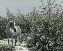 Снежный бамбук - Тамен (20 век)