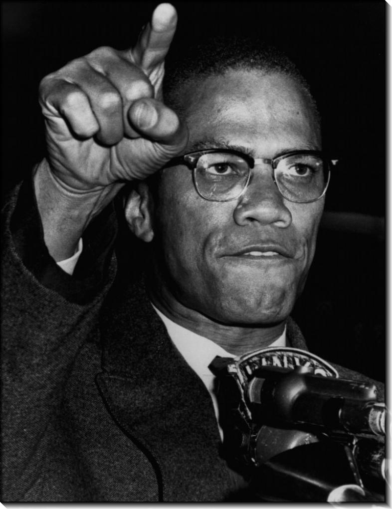 Малкольм  X в Гарлеме на ралли гражданских прав