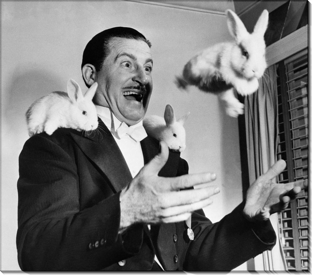 Жонглер Бен Бери жонглирование кроликами