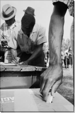 Голосование афроамериканцев - Шульке, Флип