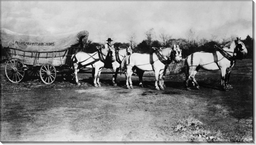 Упряжка с шестью лошадьми