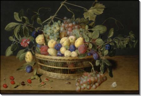 Натюрморт со сливами, виноградом и персиками в плетеной корзине - Хальсдонк, Якоб ван