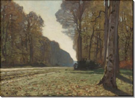 Ле пави де Шайи, 1865 - Моне, Клод