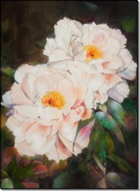 Розовые пионы, 1986 - Бейкер, Джек