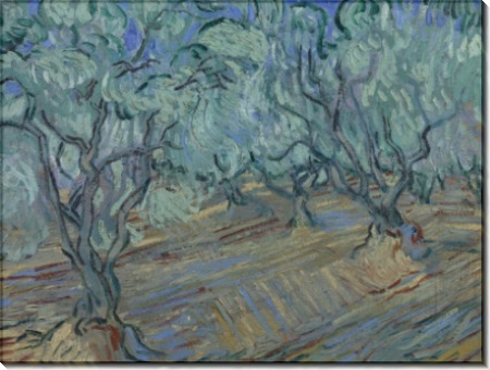 Оливковая роща и голубое небо (Olive Grove with Blue Sky), 1889 - Гог, Винсент ван