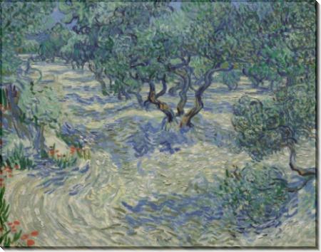 Оливковая роща (Olive Grove), 1889 - Гог, Винсент ван
