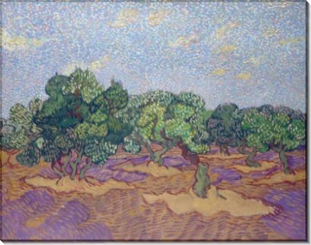 Оливковая роща и бледно-голубое небо (Olive Grove - Pale Blue Sky), 1889 - Гог, Винсент ван