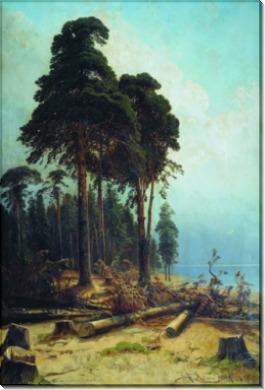 Сосновый лес, 1883-1894 - Шишкин, Иван Иванович