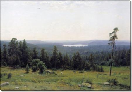 Лесные дали, 1884 - Шишкин, Иван Иванович