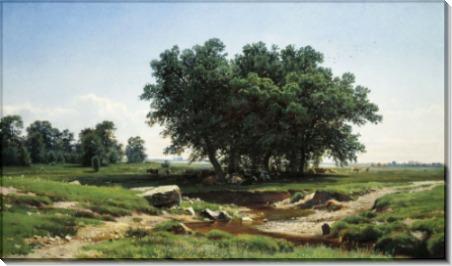 Дубки, 1886 - Шишкин, Иван Иванович
