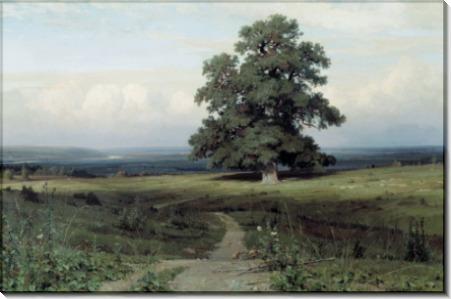 Среди долины ровнин, 1883 - Шишкин, Иван Иванович