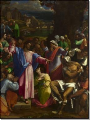 Воскрешение Лазаря -  Пьомбо, Себастьяно дель