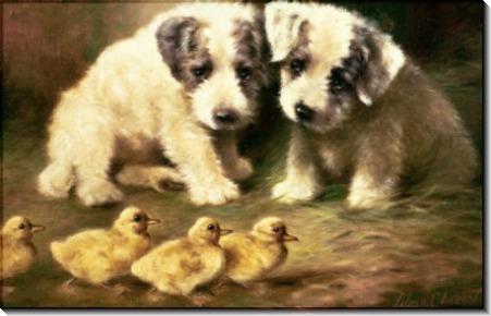 Два щенка и утята - Чевиот, Лилиан