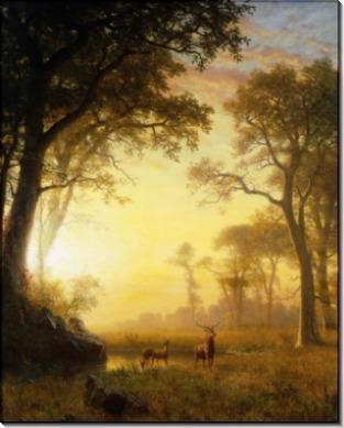 Лесной пейзаж на закате - Бирштадт, Альберт