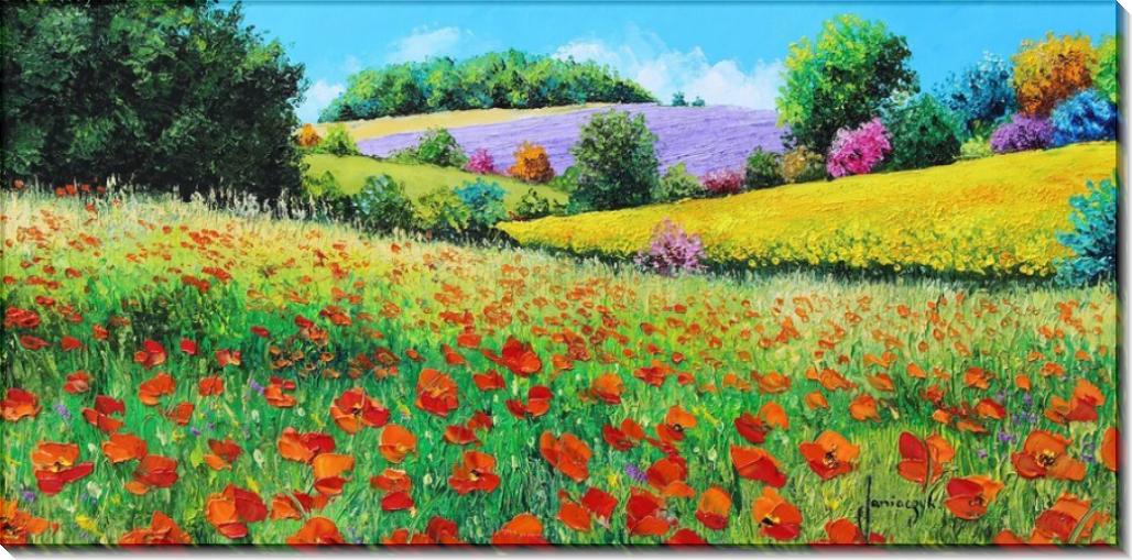 Провансальские цветы - Жаньячик, Жан-Марк (20 век)