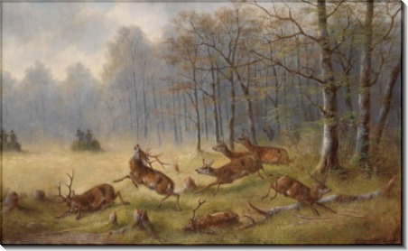 Охота на оленей - Мюллер, Мориц