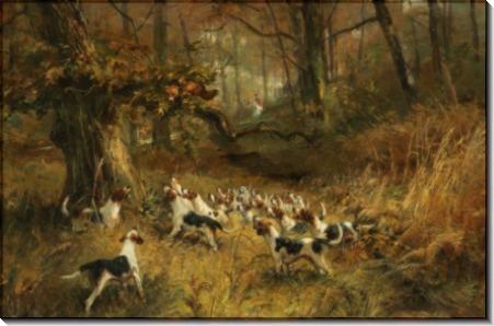 Охота на лис - Блинкс, Томас