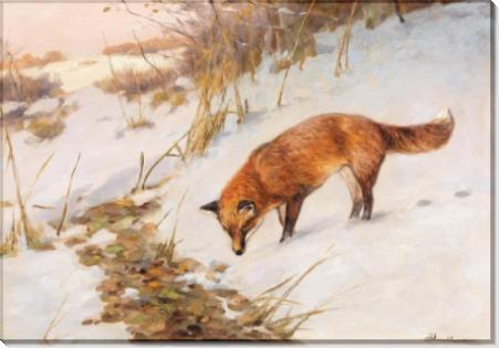 Лиса в зимнем лесу - Дратман, Карл