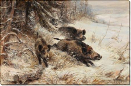 Дикие кабаны на опушке леса - Лоренц, Вильгельм