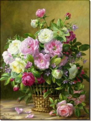Розы - Вильямс, Альберт