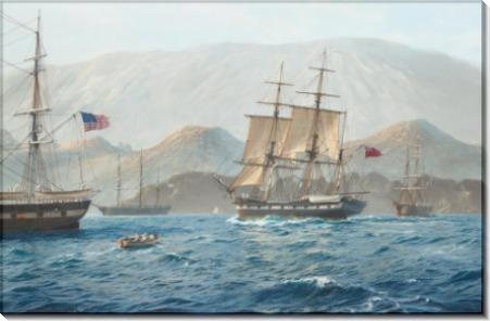 Прибытие парусного корабля Бигл на Галапагосские острова 17 сентября 1835 года - Дьюз, Джон Стивен