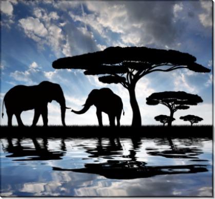 Слоны под деревом - Сток