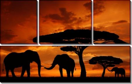 Слоны на закате - Сток