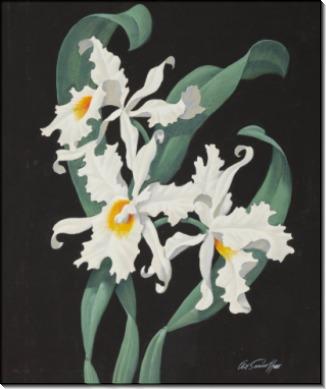 Цветы - Сарноф, Артур