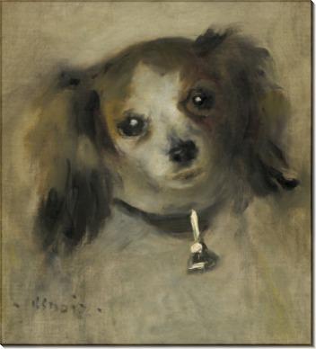 Голова собачки - Ренуар, Пьер Огюст