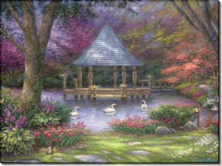Лебединый пруд - Пинсон, Чак (20 век)