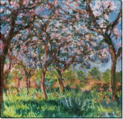 Весна в Живерни - Моне, Клод
