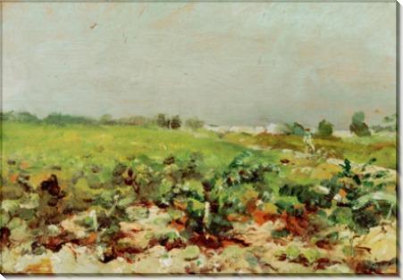 Пейзаж с виноградниками - Тулуз-Лотрек, Анри де