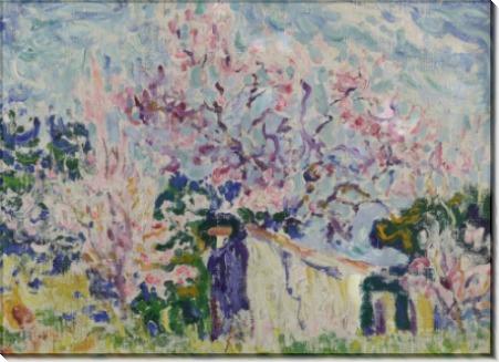 Весна в Провансе - Синьяк, Поль