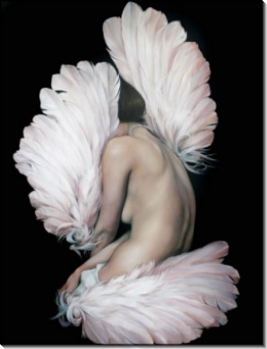 Девушка в розовых перьях - Копии Эми Джадд