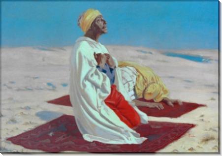 Молящийся в пустыне - Седдон, Томас