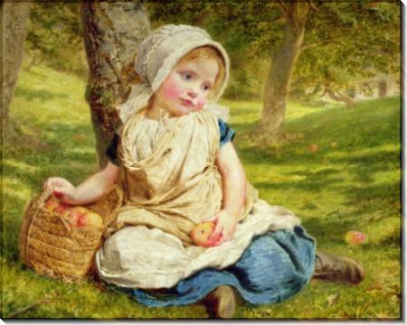 Сборщица плодов - Андерсон, Софи